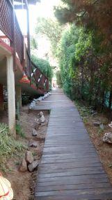 Cabañas Costa Palmera 62
